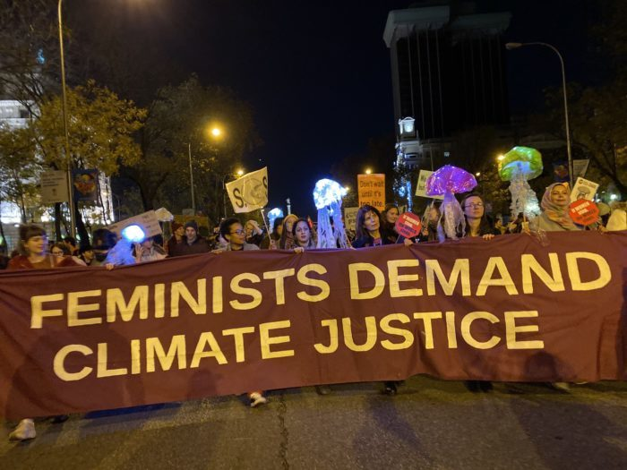 cop25_apwld_feminists_at_march.jpg